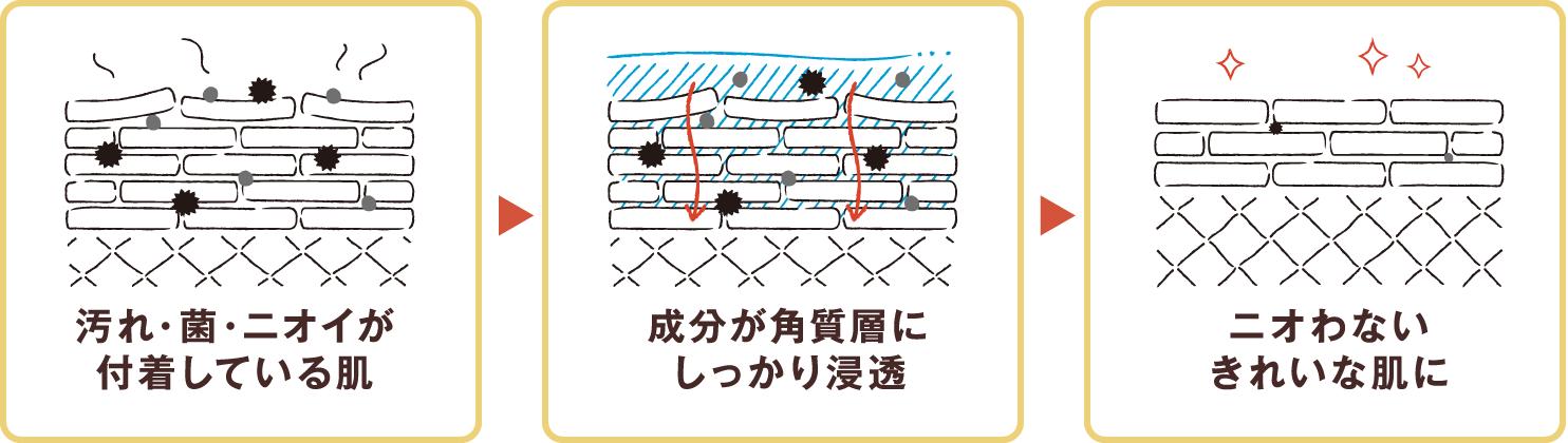 汚れ・菌・ニオイが付着している肌 → 成分が角質層にしっかり浸透 → ニオわないきれいな肌に